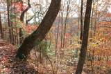 0 Enchanting Forest - Photo 8