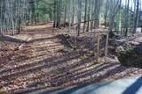 0 Rainwater Trail - Photo 3