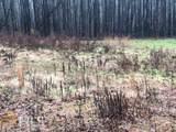 0 Long Branch - Photo 4