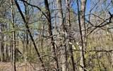 0 Timber Ridge Lane - Photo 7