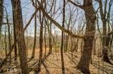 0 Oak Ridge Trail - Photo 4