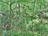 6 Tall Pines - Photo 9