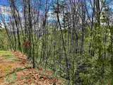 50 Overlook Trail - Photo 12