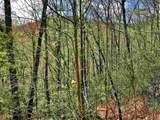 50 Overlook Trail - Photo 13