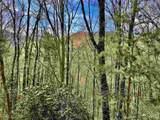 50 Overlook Trail - Photo 4