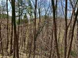 50 Overlook Trail - Photo 7