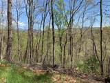 0 Bird Hunter Trail - Photo 6
