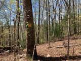 0 Bird Hunter Trail - Photo 7