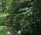 0 Covecrest Holw - Photo 3