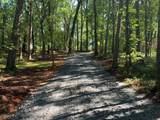 0 Stonepile Road - Photo 8