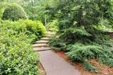 285 Red Oak Trail - Photo 8