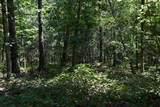 0 Fowler Creek Dr Lots 1-10 - Photo 29