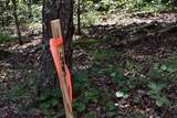 0 Fowler Creek Dr Lots 1-10 - Photo 46