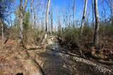 0 Blacks Bluff Road - Photo 4