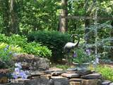 2003 Horseleg Creek Rd - Photo 62