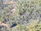 171 Tall Pines Trail - Photo 11