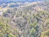 171 Tall Pines Trail - Photo 12
