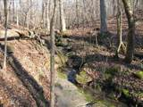236 Red Fox Run - Photo 60