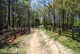 198 Honey Creek Road - Photo 7