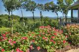 95 Greenfield Ridge - Photo 25