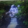 612 Monument Falls Road - Photo 1