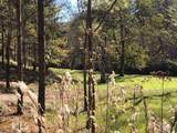 1075 Spout Springs Road - Photo 15