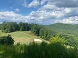 0 Bent Grass - Photo 1