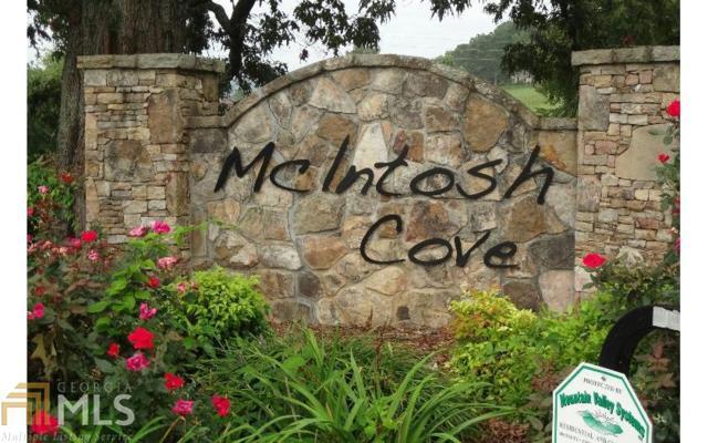 0 Mcintosh Cv #20, Hayesville, NC 28904 (MLS #8061553) :: Anderson & Associates