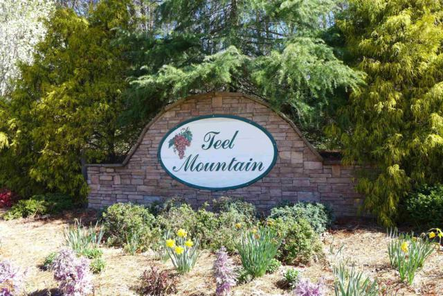 0 Teel Mountain Dr, Cleveland, GA 30528 (MLS #8148040) :: Rettro Group