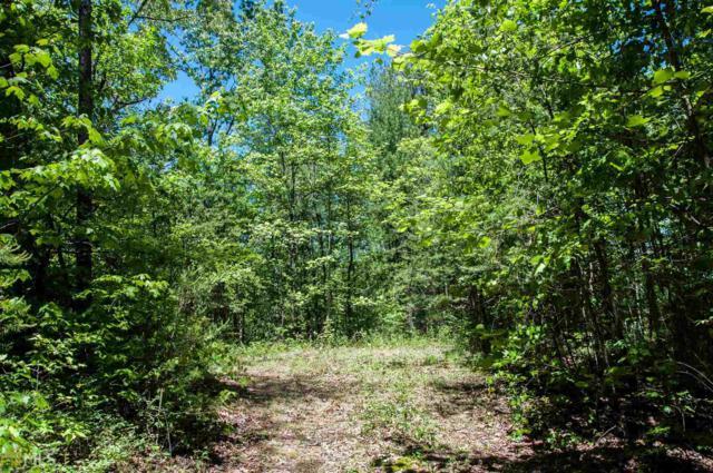 0 Hidden Falls Dr, Tiger, GA 30576 (MLS #8184652) :: Buffington Real Estate Group