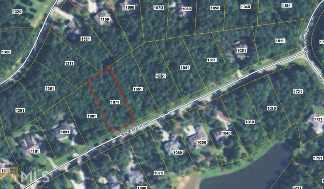 1071 Big Water Point, Greensboro, GA 30642 (MLS #8287768) :: Anderson & Associates