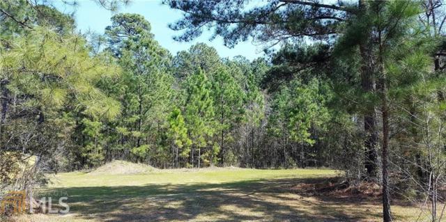 0 Hidden Creek Dr, Guyton, GA 31312 (MLS #8343639) :: The Durham Team