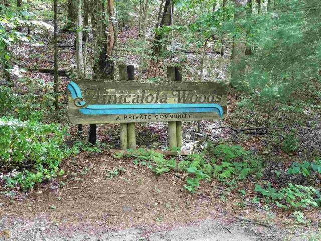 475 Amicalola Woods Rd, Dawsonville, GA 30534 (MLS #8380768) :: Keller Williams Realty Atlanta Partners