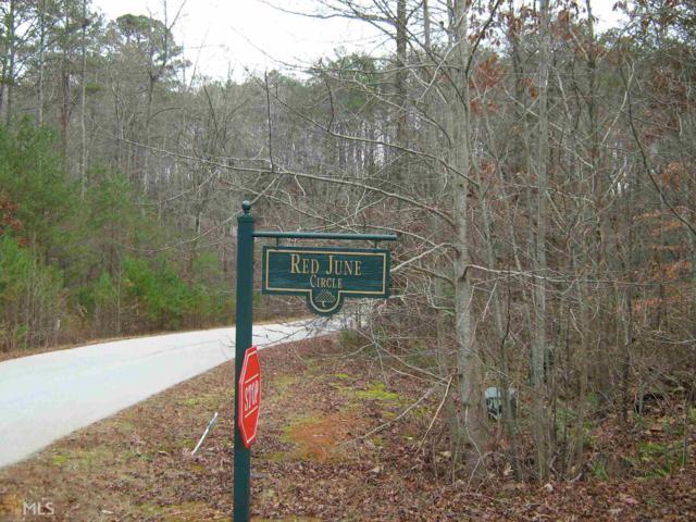 1317 Red June Ln, Clarkesville, GA 30523 (MLS #8419723) :: The Durham Team