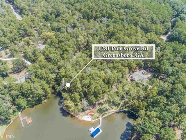 1781 Pine Grove Rd, Greensboro, GA 30642 (MLS #8447042) :: Keller Williams Realty Atlanta Partners