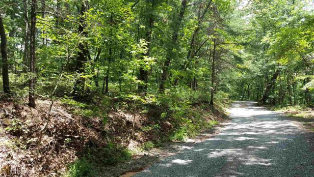 0 Old Burnt Mt Rd #315, Ellijay, GA 30540 (MLS #8450210) :: Anderson & Associates