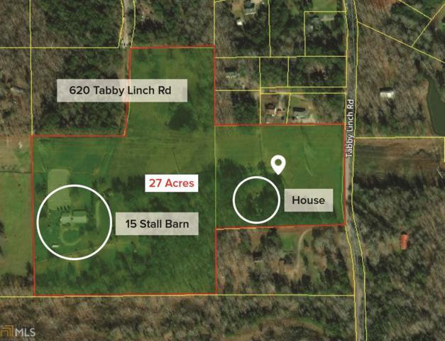 620 Tabby Linch Rd, Moreland, GA 30259 (MLS #8468656) :: RE/MAX Eagle Creek Realty