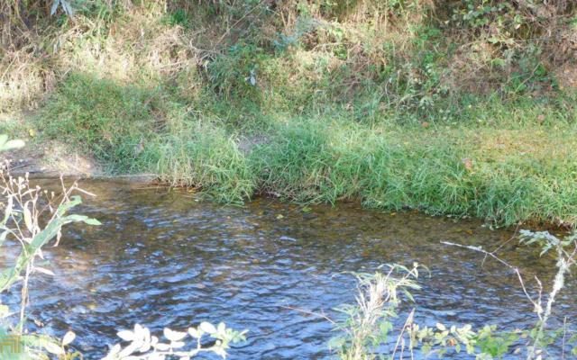 0 Brasstown Trails #51, Warne, NC 28909 (MLS #8470465) :: Ashton Taylor Realty
