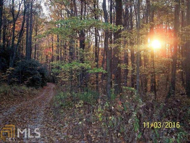 Plat 6 Kelsey Mountain Rd., Dillard, GA 30537 (MLS #8488262) :: The Durham Team