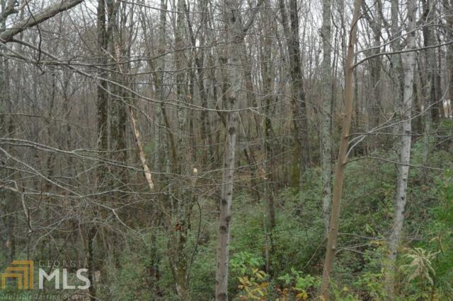 158 Raspberry Ln, Clarkesville, GA 30523 (MLS #8489601) :: Royal T Realty, Inc.