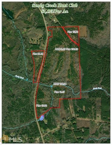 0 Roosevelt Hwy, Greenville, GA 30222 (MLS #8496225) :: Royal T Realty, Inc.