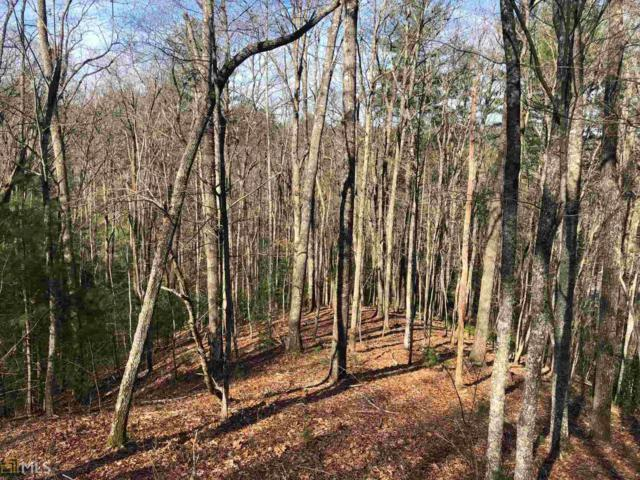 0 Natures Courtyard Lot 46, Mineral Bluff, GA 30559 (MLS #8546269) :: The Heyl Group at Keller Williams