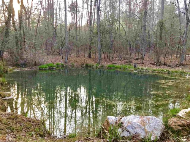 0 Twin Springs Rd, Mineral Bluff, GA 30559 (MLS #8557321) :: Rettro Group