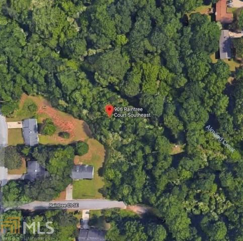 906 Raintree Ct, Conyers, GA 30094 (MLS #8564076) :: Team Cozart