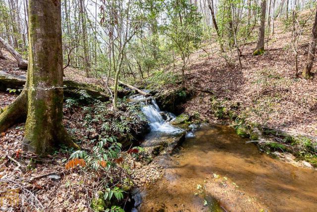 0 River Hill Rd, Cornelia, GA 30531 (MLS #8568929) :: Team Cozart