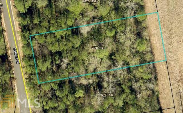 0 Settlers Trl Lot 131, Woodbine, GA 31569 (MLS #8577935) :: Maximum One Greater Atlanta Realtors