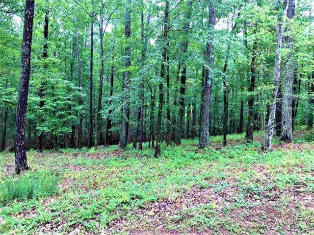 1140 Mill Creek #24, Greensboro, GA 30642 (MLS #8601847) :: Rettro Group