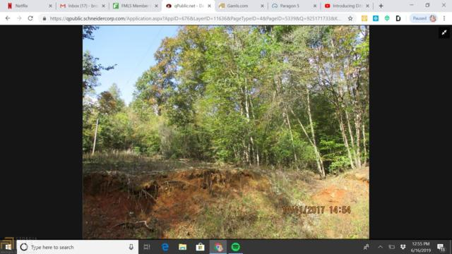 0 Odum Chumbley Rd, Dawsonville, GA 30534 (MLS #8604543) :: Royal T Realty, Inc.