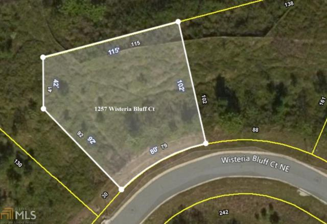 1257 Wisteria Bluff Ct, Hoschton, GA 30548 (MLS #8613890) :: Rettro Group