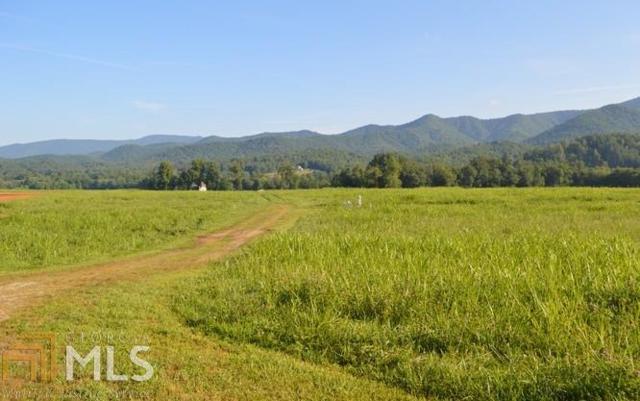 0 Rice Farm Overlook Tr 1, Hayesville, NC 28904 (MLS #8618700) :: The Heyl Group at Keller Williams